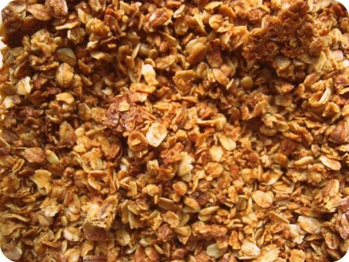 Granola Apple Cinnamon